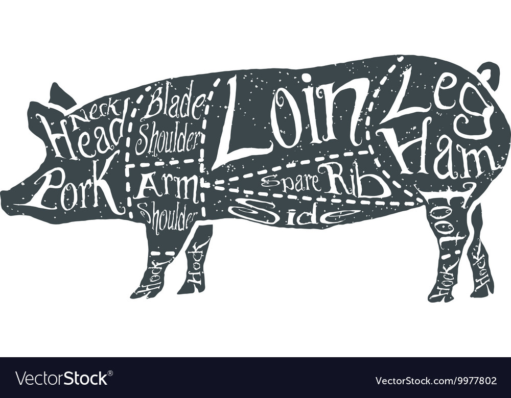 American cuts of pork vector