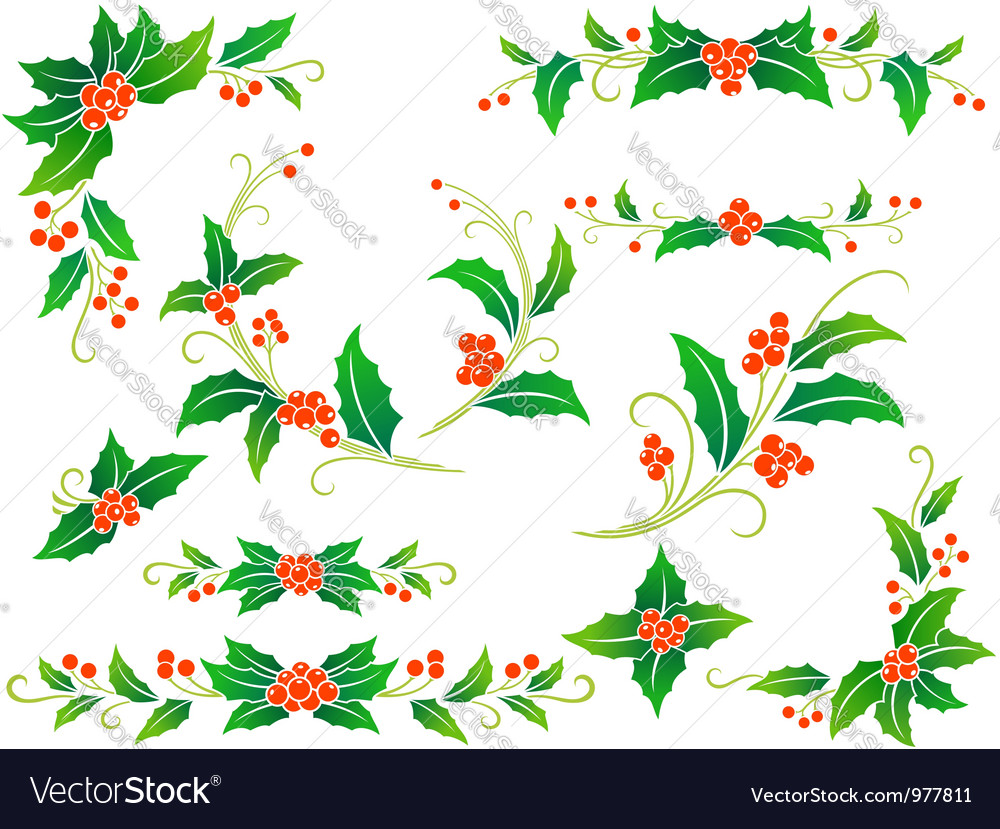 Christmas holly decoration vector