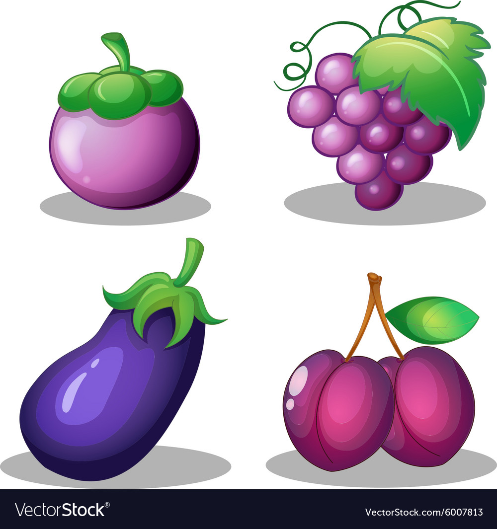 Fruits and vegetable in purple vector