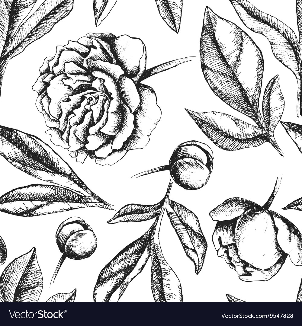 Vintage elegant pattern with peony flowers vector