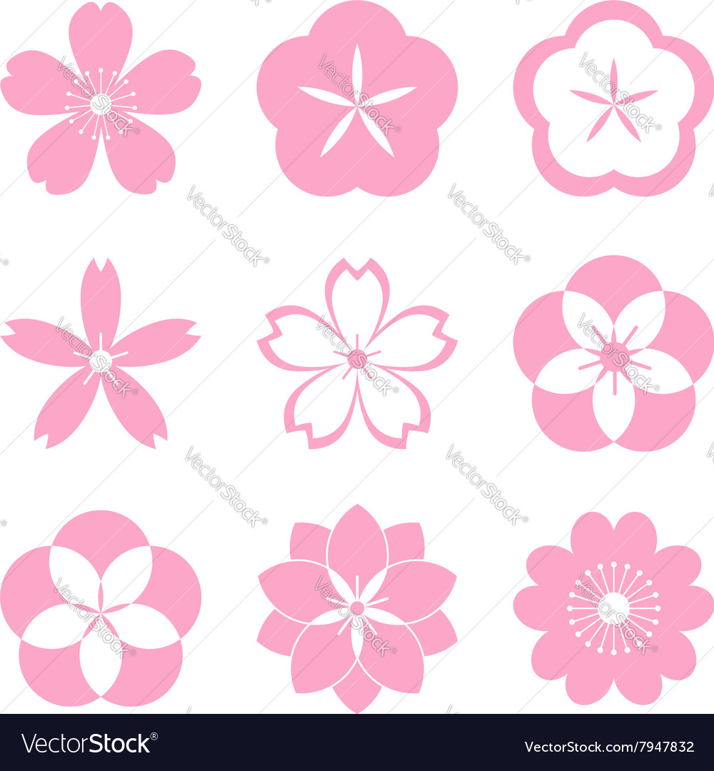 Cherry blossom icon set vector