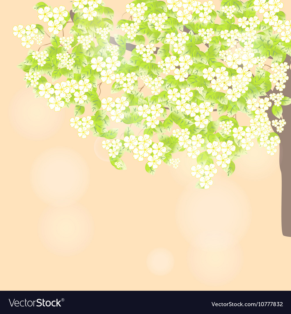 Spring leaves light background vector