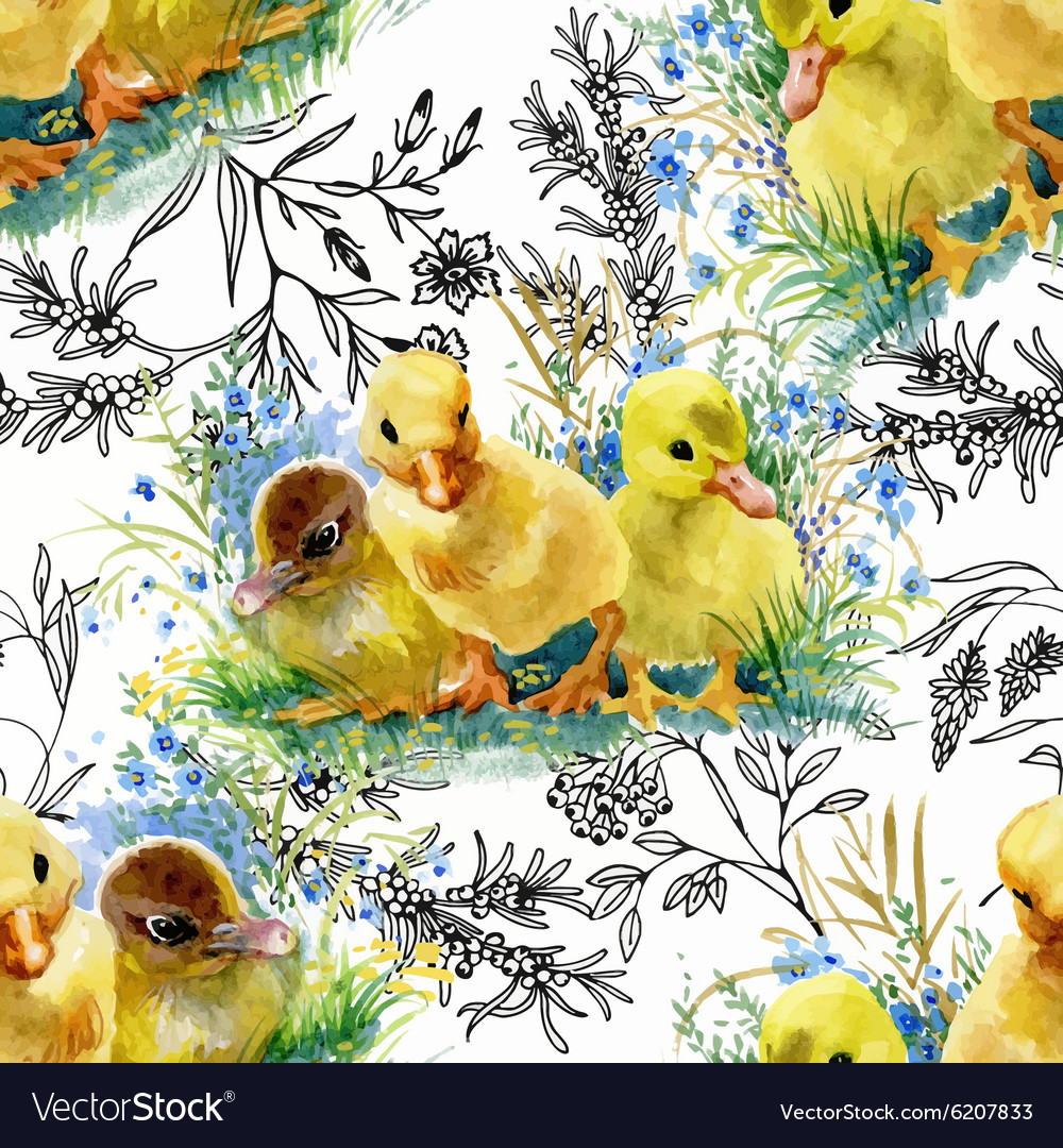 Little fluffy cute watercolor ducklings chickens vector