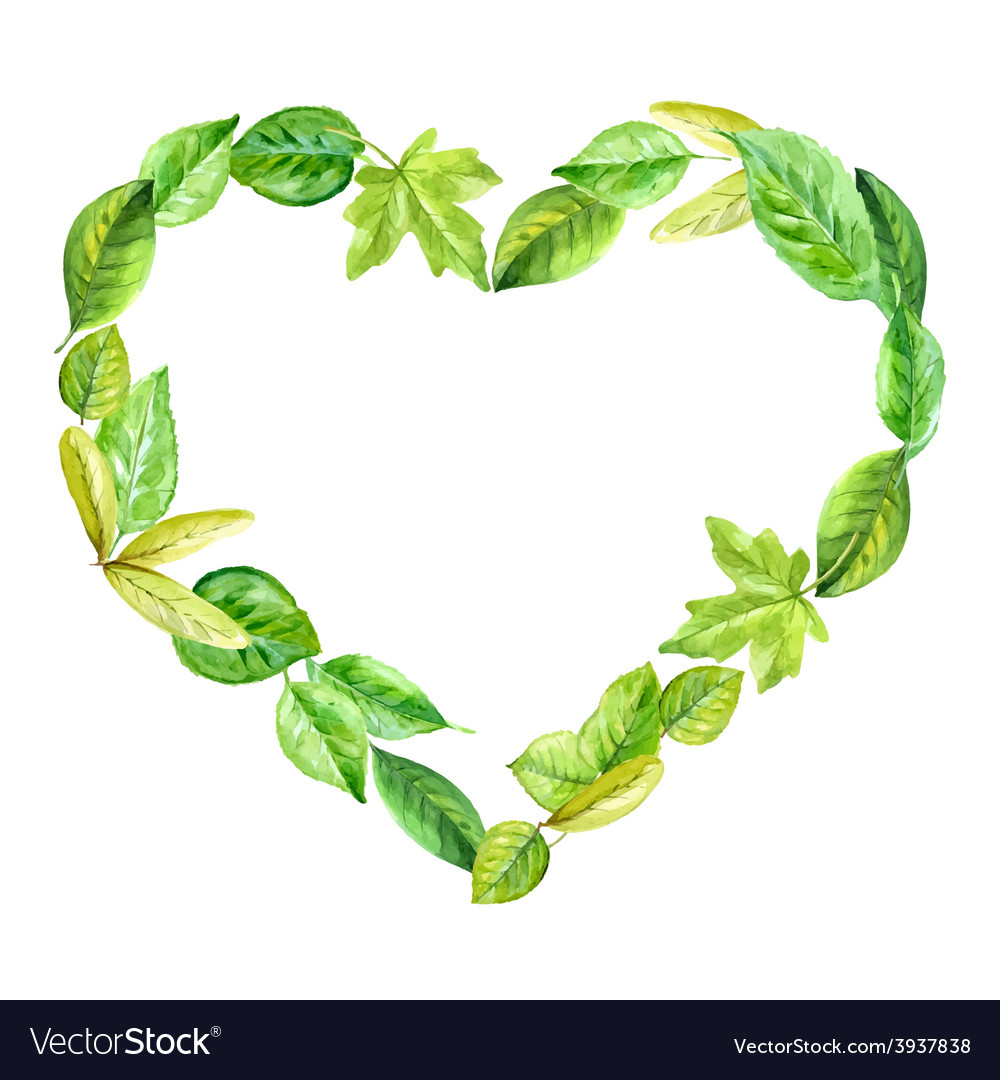 Frame heart made of various leaves in watercolor vector