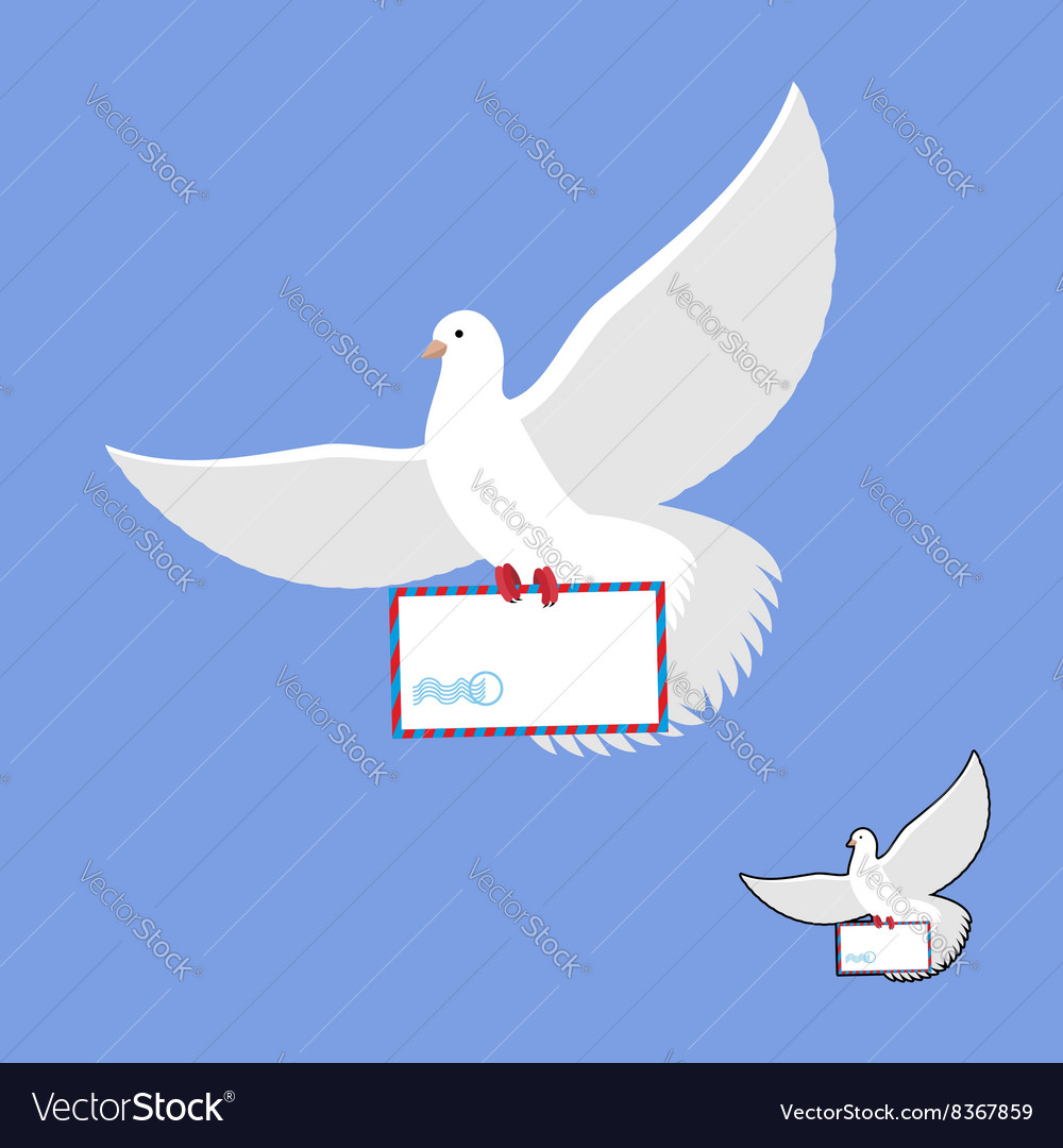 Postal pigeon and mailing envelope white dove vector