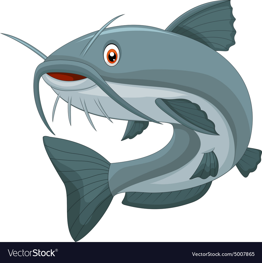 Cartoon catfish vector