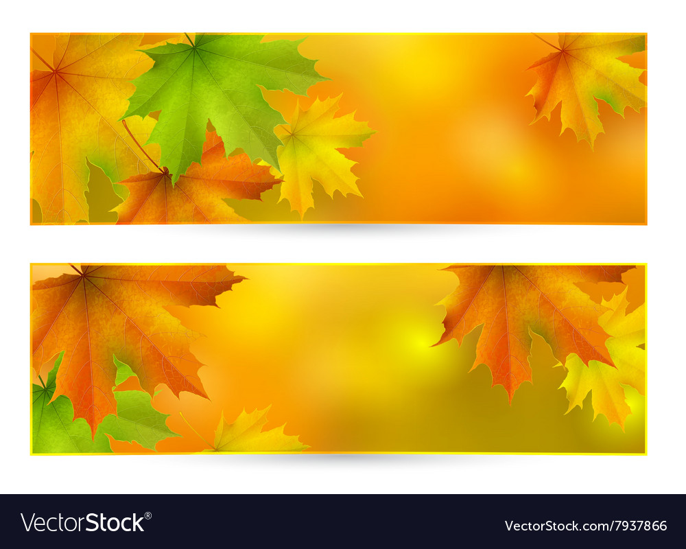 Autumn horizontal banner vector