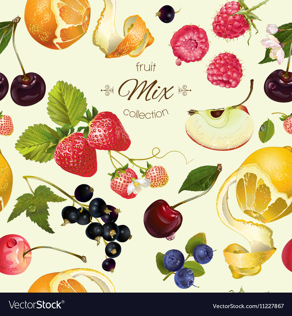 Fruit and berry pattern vector