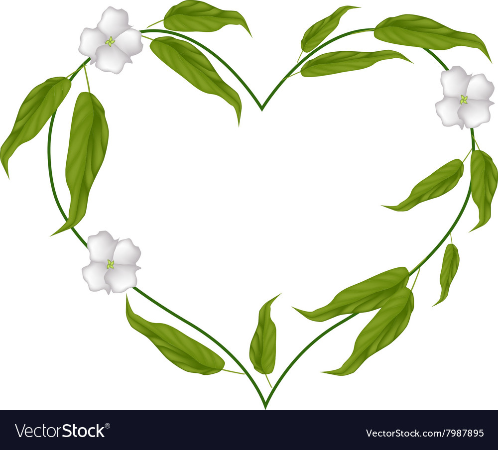 Chebulic myrobalans blossoms in a heart shape vector