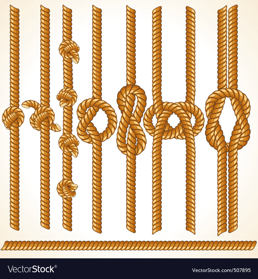 Seamless rope elements vector
