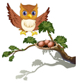 An owl watching the eggs at the branch of a tree vector image