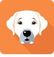 dog Labrador Retriever icon flat design vector image