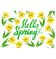 yellow Tulip bouquet over white background with vector image