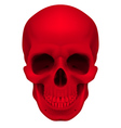 Red skull vector image