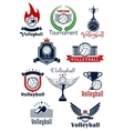 Volleyball tournament or team symbols vector image
