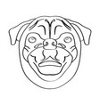 isolated pug avatar vector image