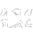 Set of stylized body parts vector image
