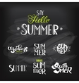 Hello Summer Lettering set at chalkboard vector image