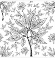seamless tree pattern 011 grunge vector image vector image