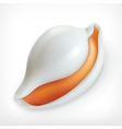 White shell icon vector image