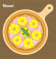 hawai pizza vector image