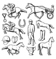 Vintage Equestrian Sport Elements Collection vector image