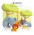 Wild animal background 2 vector image