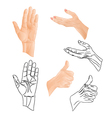 Human hands drawing and outline set two vector image
