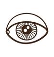 Eye rough symbol vector image