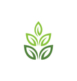 Eco Tree Leaf Logo Template vector image