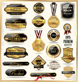 Luxury gold and black labels vector image vector image