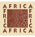 Africa background with text and texture Giraffe vector image