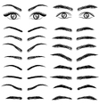 Eyes eyebrow women and man vector image