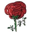 greetings festive beauty mark rose vektor vector image