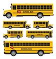 School buses vector image