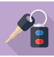 car keys with shadow vector image