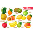 Icons of fruit vector image