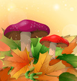 Red mushrooms and autumn leaves on a light vector image