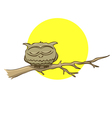 Sleeping owl sitting on a branch on a background vector image