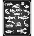 Set of Fish and sea animals silhouette on grunge vector image