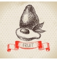 Hand drawn sketch fruit avocado Eco food vector image