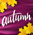hand drawn autumn lettering label with leaves on vector image