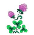 Clover flower vector image