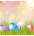 Easter bokeh background with eggs on meadow vector image vector image