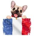 French bulldog fan vector image