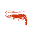 Shrimp logo vector image