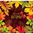 seasonal frame of autumnal leaves vector image vector image