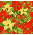 Seamless background with red and yellow Poinsettia vector image vector image