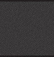 black leather pattern vector image