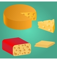 Set Pieces of cheese vector image